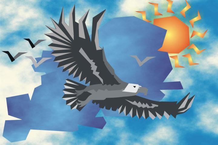 Wall Art - Eagle